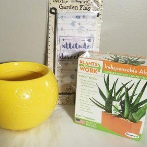 🧡Sale Item! 3pc Aloe Vera Plant Set